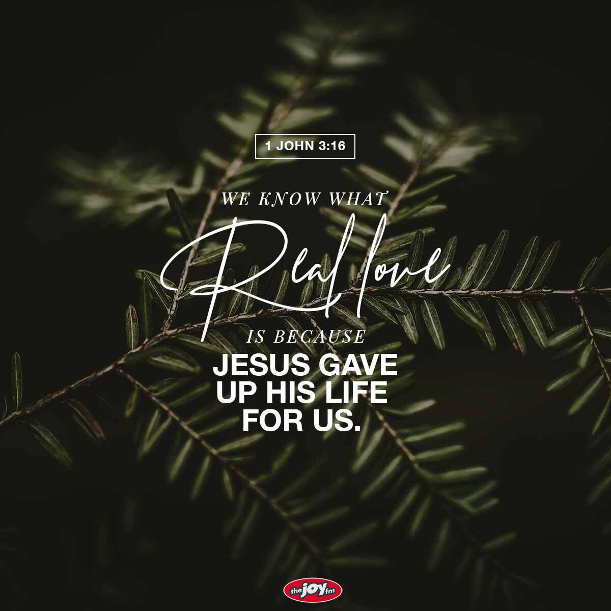1 John 3:16 - Verse of the Day
